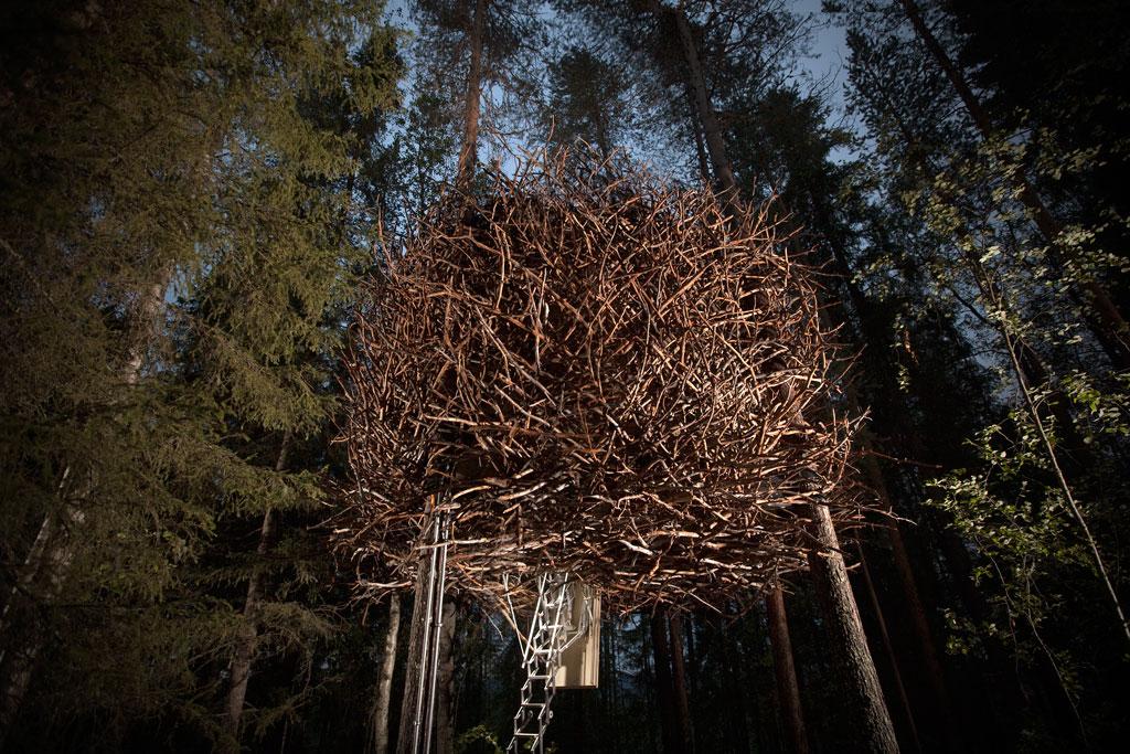 treehotel-birds_nest-1