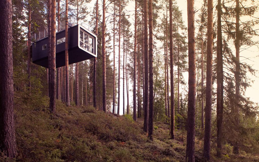 treehotel-cabin_1