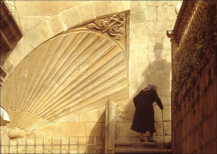 Une coquille Saint-Jacques sculptée sur la façade de la cathédrale de Saint-Jacques de Compostelle, source : http://www.jdiezarnal.com/public/santiagodecompostela.html via Wikipedia.org (consulté le 25 août 2013)