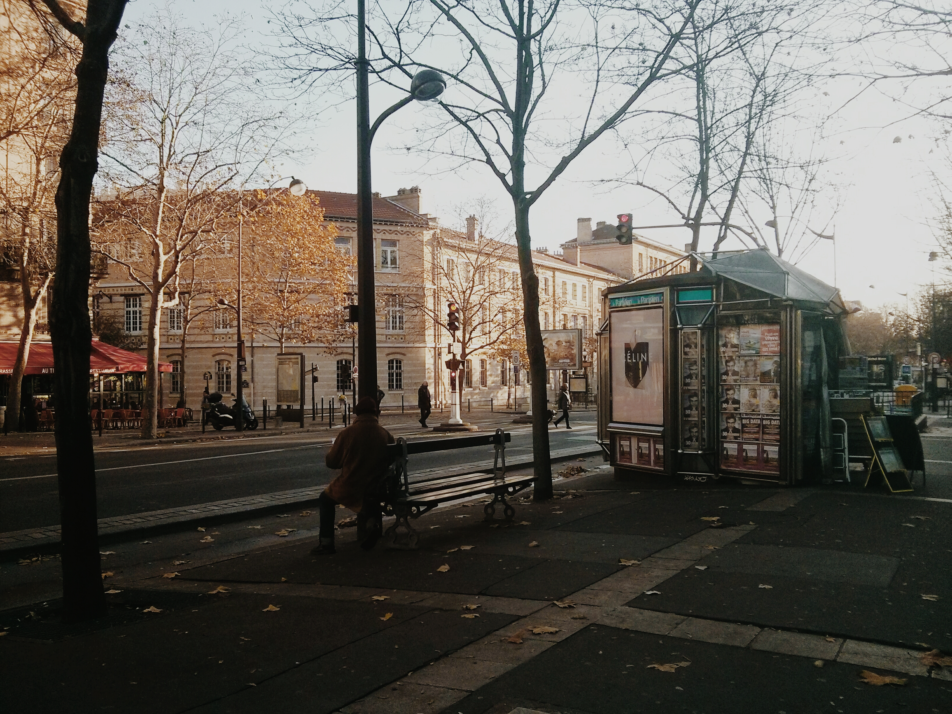Un matin d'automne sur l'avenue Daumesnil, Paris.