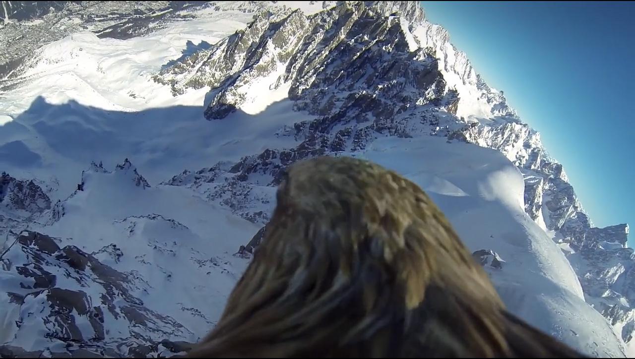 Aperçu d'une séquence alpine du projet L'envol de l'aigle