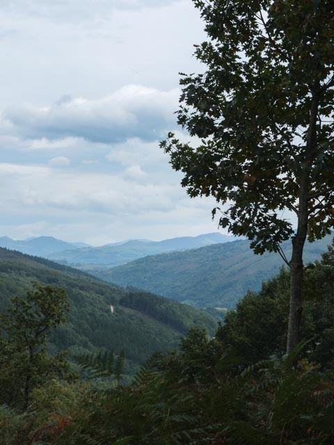 pays-basque-dimanche-automne_001001-6