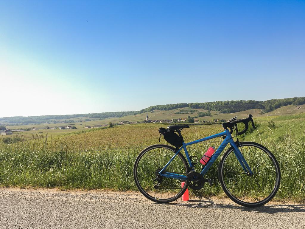 D26 : En vélo sur la Route Touristique du Champagne